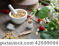 Mortar, homeopathic globules and chamomile plant. 42699094