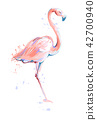 flamingo, vector, illustration 42700940
