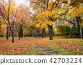 가을, 공원, 파크 42703224