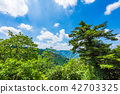 takao mountain, mountain, summer 42703325