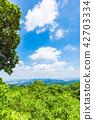 takao mountain, summer, landscape 42703334