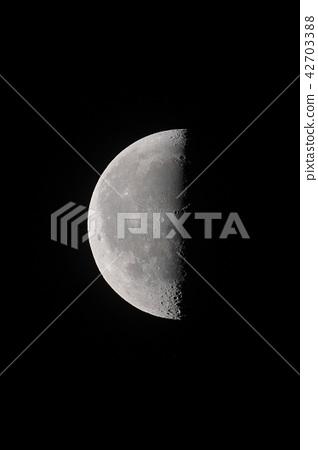Waning moon 42703388