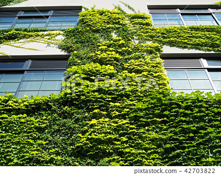 Grass covered wall 42703822