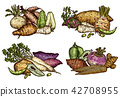 Fresh farm vegetables and exotic beans sketches 42708955