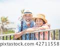 旅行南國家手段的資深夫婦 42711558