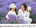 young woman and girl are in the lavender field 42719372