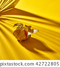 Close up view of yellow ripe, juicy physalis single fruit with striped shadows on a yellow 42722805