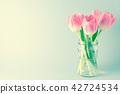tulip pink space 42724534