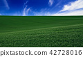Abstract natural background 42728016