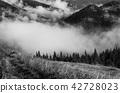 Foggy morning  landscape 42728023