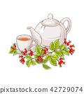 herb, fruit, herbal 42729074