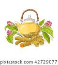 turmeric, curcuma, tea 42729077