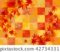 maple, yellow leafe, autumn 42734331
