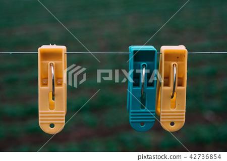 Three plastic clothes pegs 42736854