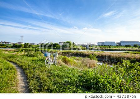 Tama river bank Tokyo suburban natural landscape 42738758