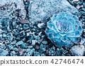 Small succulent in a flowerpot. 42746474