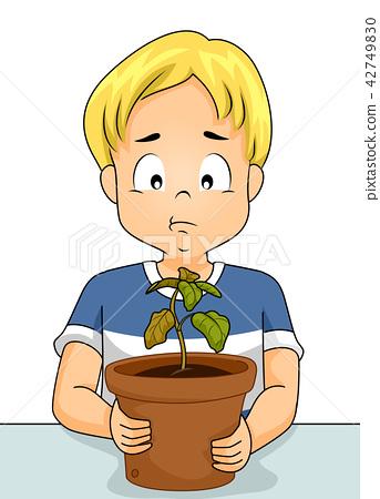 Kid Boy Sad Dry Plant Illustration 42749830