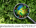Bacteria And Germs On Vegetables 42755917
