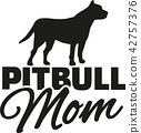 pitbull, dog, Mom 42757376