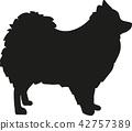 Pomeranian silhouette 42757389