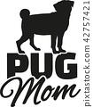 pug, dog, pet 42757421