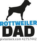 rottweiler, dog, pet 42757442
