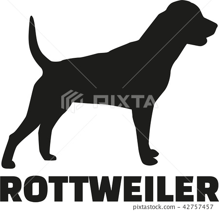 dog_rottweiler_real_word.eps 42757457