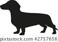 Silhouette of a dachshund 42757656