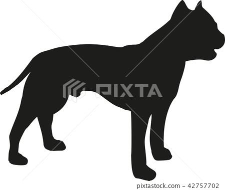 Staffordshire Bull Terrier silhouette 42757702