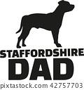 terrier, dog, animal 42757703
