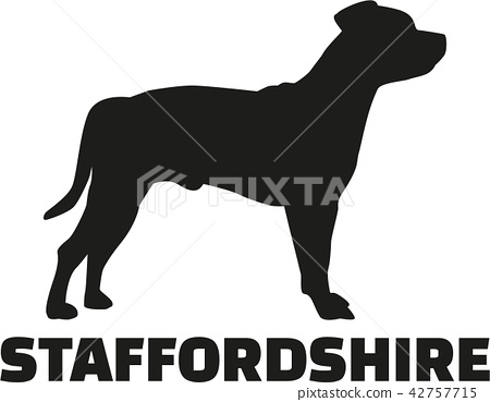 Staffordshire Terrier with breed name 42757715