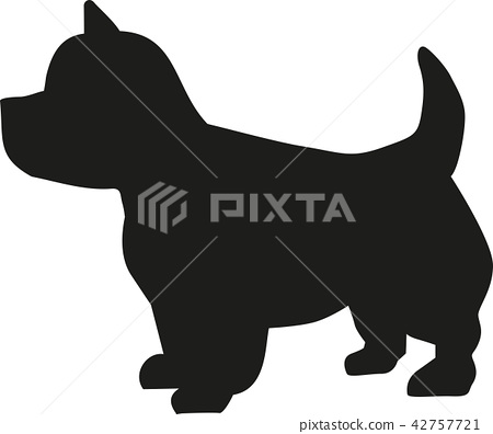West Highland Terrier icon 42757721