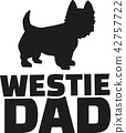 highland, terrier, dog 42757722