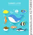 夏天 魚 海馬 42758803