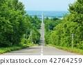 clear, hokkaido, road 42764259