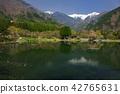 池塘中央阿爾卑斯山長野縣遙遠的看法Komagane市片斷 42765631
