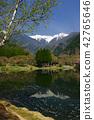 池塘中央阿爾卑斯山長野縣遙遠的看法Komagane市片斷 42765646