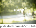 Natural green blurred background or bokeh background 42768346