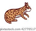台灣瀕臨絕種生物-石虎 42770517