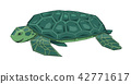 turtle, tortoise, animals 42771617