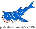 whale shark, fish, fishes 42772092
