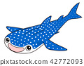 whale shark, fish, fishes 42772093