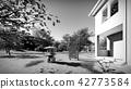 American house in rural settings 3d rendering 42773584