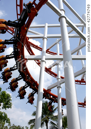 Roller Coaster 42774749