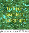 Seamless Background, Fir Trees 42779848