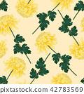 Yellow Chrysanthemum Flower Beige Ivory Background 42783569
