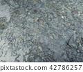 Pebbles leading into white sand beach 42786257