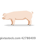 Flat geometric Yorkshire pig 42786409