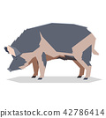 Flat geometric Ossabaw Island pig 42786414
