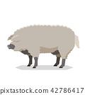 Flat geometric Mangalitsa pig 42786417